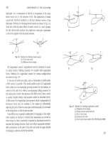 Aerodynamics of helicopter - part 2 doc