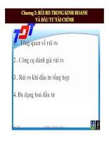 RỦI RO TRONG KINH DOANH VÀ ĐẦU TƯ TÀI CHÍNH pdf