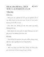 Giáo án môn sinh lớp 6 - Tiết 10 NƯỚC VÀ MUỐI KHOÁNG CỦA RỄ doc