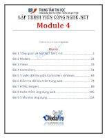 lập trình viên công nghệ. net module 4