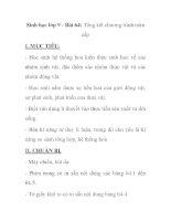 Sinh học lớp 9 - Bài 64: Tổng kết chương trình toàn cấp potx