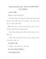Giáo án sinh học lớp 6 - Bài 45: NGUỒN GỐC CÂY TRỒNG ppsx