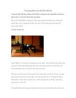 Ứng dụng phong cách nội thất Nhật Bản pot