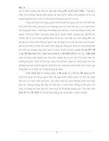 Tài liệu tổng hợp những đóng góp của Việt Nam trong thương mại quốc tế phần 4 pps