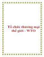 Giáo trình quan hệ kinh tế quốc tế - Tổ chức thương mại thế giới - WTO pot