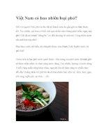 Việt Nam có bao nhiêu loại phở? ppsx