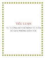 tiểu luận tư tưởng Hồ Chí Minh: