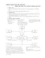 TRIỂN KHAI CHỦ ĐỀ NHÁNH: MỘT SỐ CON VẬT SỐNG TRONG RỪNG ppt