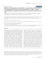Effect of cyclooxygenase inhibition on cholesterol efflux proteins and atheromatous foam cell transformation in THP-1 human macrophages: a possible mechanism for increased cardiovascular risk pot