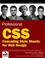 Wrox Professional CSS Cascading Style Sheets for Web Design phần 1 ppsx