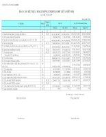 CÔNG TY CỔ PHẦN BIBICA - BÁO CÁO KẾT QUẢ HOẠT ĐỘNG KINH DOANH GIỮA NIÊN ĐỘ QUÝ III NĂM 2009 pdf