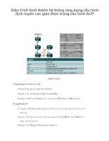 Giáo trình hình thành hệ thống ứng dụng cấu hình định tuyến các giao thức trong cấu hình ACP p1 pps