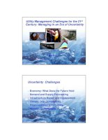public utilities management challenges for the 21st century phần 1 ppt