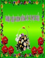 Giáo án điện tử mầm non: Bông hoa cúc trắng potx