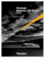 Strategic business risk insurance 2 ppsx
