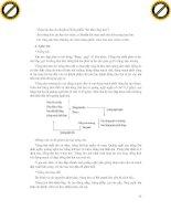 Giáo trình hướng dẫn phân tích và chẩn đoán bệnh thú nuôi từ các triệu chứng báo trước phần 4 pptx