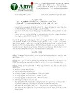 NGHỊ QUYẾT ĐẠI HỘI ĐỒNG CỔ ĐÔNG BẤT THƯỜNG NĂM 2010 CÔNG TY CỔ PHẦN SXKD DƯỢC & TTB Y TẾ VIỆT MỸ pot