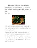 Cẩn thận với 6 rau quả có thể gây ngộ độc potx