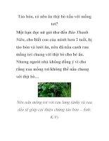 Táo bón, có nên ăn thịt bò nấu với mồng tơi? pdf