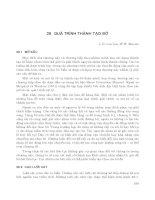 Kỹ thuật biển ( dịch bởi Đinh Văn Ưu ) - Tập 1 Nhập môn về công trình bờ - Phần 10 pps