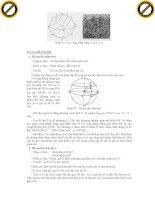 Giáo trình hình thành phương trình ứng dụng nguyên lý phương pháp dịch chuyển chủ yếu của thiên thạch p5 pdf