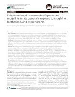 Enhancement of tolerance development to morphine in rats prenatally exposed to morphine, methadone, and buprenorphine docx