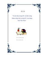 """Đề tài """"Tự do hóa trong EU và khả năng thâm nhập thị trường EU của hàng hoá Việt Nam"""