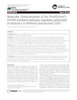 Molecular characterization of the PhoPQ-PmrDPmrAB mediated pathway regulating polymyxin B resistance in Klebsiella pneumoniae CG43 ppt