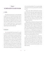 Giáo trình bảo vệ môi trường - Phần 1 Bảo vệ khí quyển - Chương 4 pps
