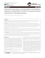 Traumatic brain injury and the effects of diazepam, diltiazem, and MK-801 on GABA-A receptor subunit expression in rat hippocampus ppt