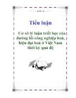 Tiểu luận: Cơ sở lý luận triết học của đường lối công nghiệp hoá, hiện đại hoá ở Việt Nam thời kỳ quá độ pps
