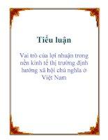 Tiểu luận: Vai trò của lợi nhuận trong nền kinh tế thị trường định hướng xã hội chủ nghĩa ở Việt Nam pdf
