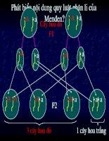 Giáo án điện tử môn sinh học: Sinh học lớp 12- Quy luật phân ly Nhiễm Sắc Thể Giới Tính ppsx