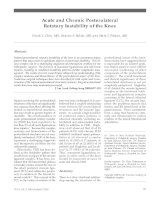 Sự bất ổn định cấp tính và mãn tính của đầu gối ppsx