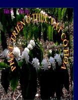 Giáo án điện tử môn sinh học:Sinh học lớp 12- Phát triển ở thực vật có hoa potx