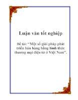 Luận văn tốt nghiệp: Một số giải pháp phát triển bán hàng bằng hình thức thương mại điện tử ở Việt Nam pot