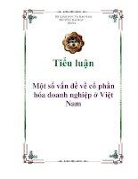 Tiểu luận: Một số vấn đề về cổ phần hóa doanh nghiệp ở Việt Nam ppt
