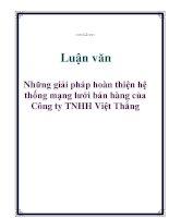 Luận văn: Những giải pháp hoàn thiện hệ thống mạng lưới bán hàng của Công ty TNHH Việt Thắng doc