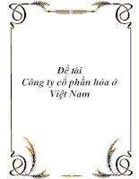 Đề tài: Công ty cổ phần hóa ở Việt Nam doc