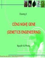 Giáo án điện tử môn Sinh vật học : CÔNG NGHỆ GENE (GENETICS ENGENEERING) pps