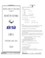 Bộ đề ôn tập HKI môn toán lớp 11 năm 2010-2011 docx
