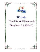 Tiểu luận: Tìm hiểu về Hội các nước Đông Nam Á ( ASEAN) potx