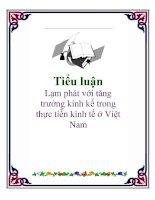 Tiểu luận: Lạm phát với tăng trưởng kinh kế trong thực tiễn kinh tế ở Việt Nam ppsx