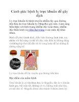 Cảnh giác bệnh lỵ trực khuẩn dễ gây dịch pdf