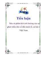 Tiểu luận: Nêu và phân tích ảnh hưởng của sự phát triển dân số đến kinh tế, xã hội ở Việt Nam docx