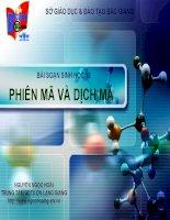 Giáo án điện tử môn sinh học:Sinh học lớp 12 doc