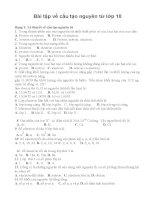 Bài tập về cấu tạo nguyên tử lớp 10