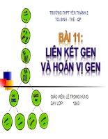 Giáo án điện tử sinh học:Sinh học lớp 12- Bài giảng hay- Liên kết Gen và Hoán Vị Gen docx