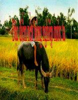 Giáo án điện tử môn địa lý: Đặc điểm nền nông nghiệp nước ta pdf
