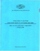 tổng công ty cổ phần xuất nhập khẩu xây dựng việt nam vinaconex báo cáo tài chính quý 1 năm 2012 công ty mẹ